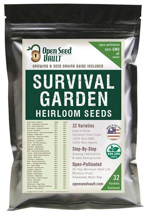 seeds-1