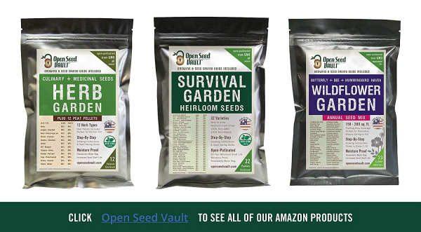 seeds-3