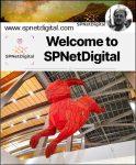 Digital-Marketing-Website-Blog-Content-SEO-SPNetDigital